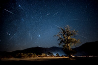 Perseid meteor shower - Kern County California